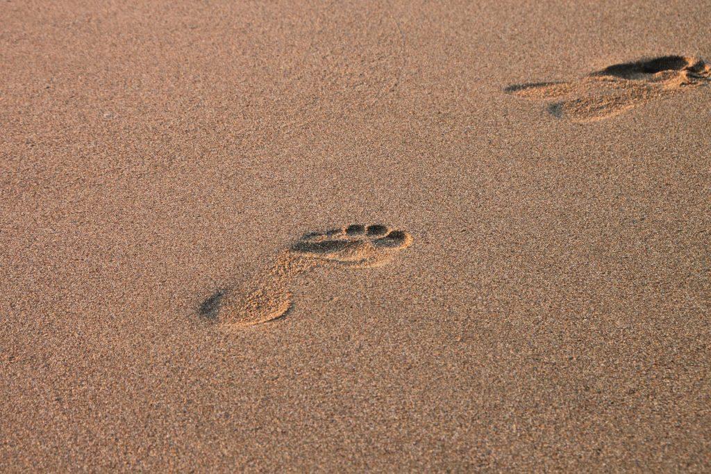 beach-88479_1920